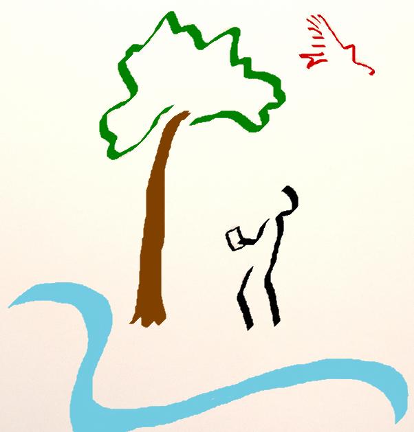 Baumgutachten Logo Potsdam und Umgebung - Baumgutachten für Potsdam